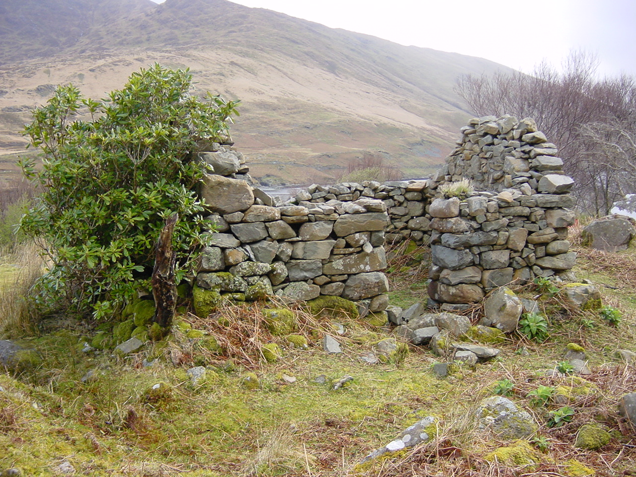 Old stone ruin of Irish cottage. The Cottage was featured in the film The Field.