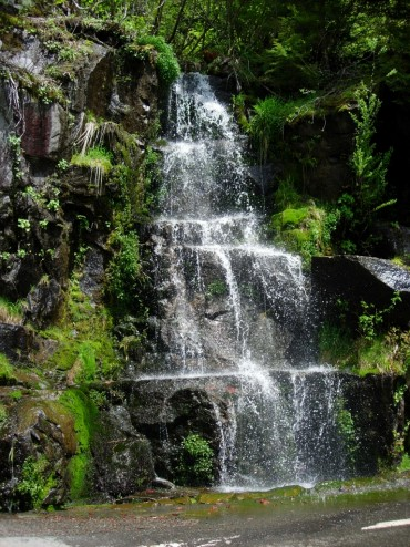A small waterfall with many landing shelves, against green foliage.