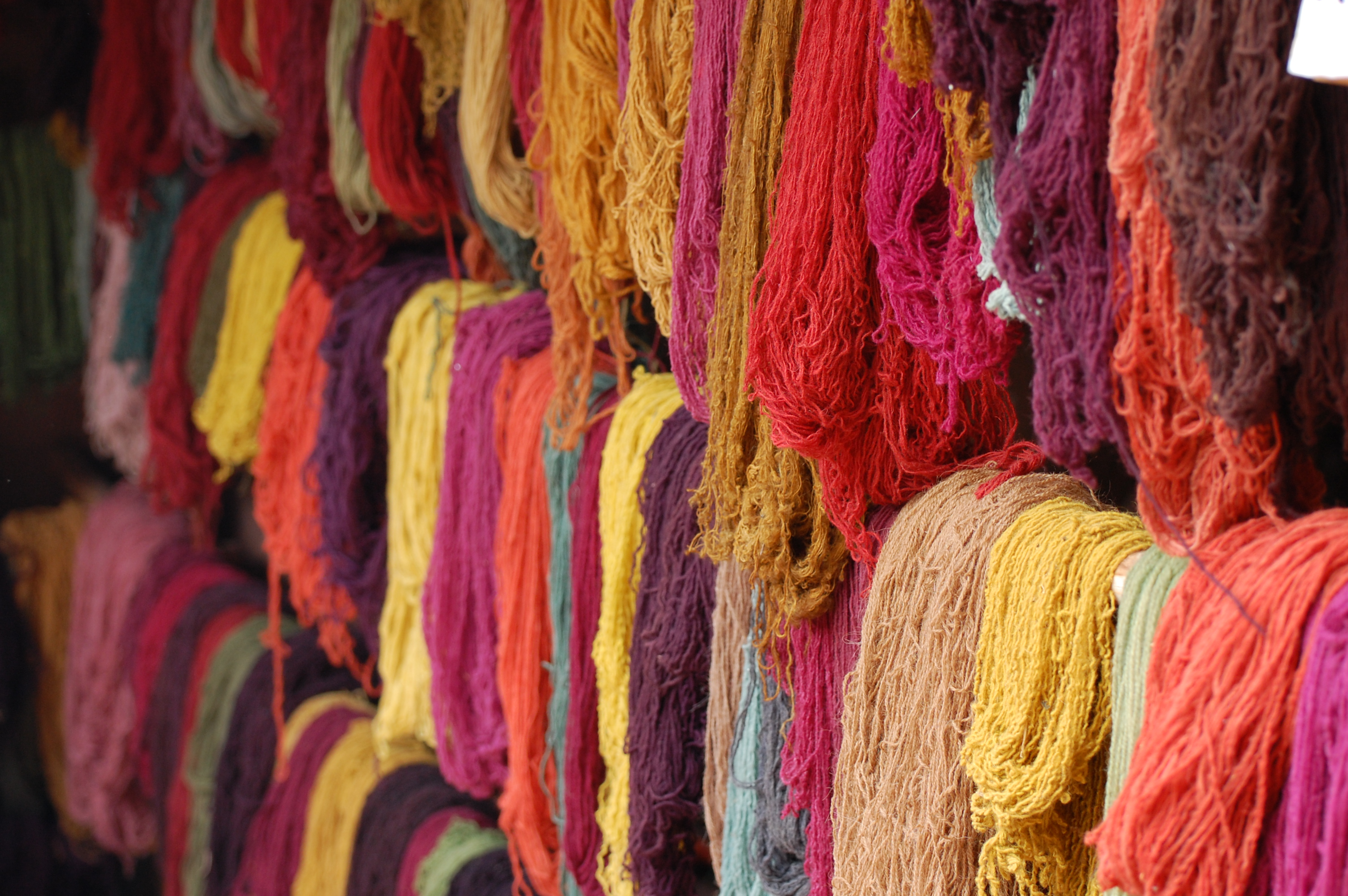 Alpaca yarn in a multitude of colors hanging from racks
