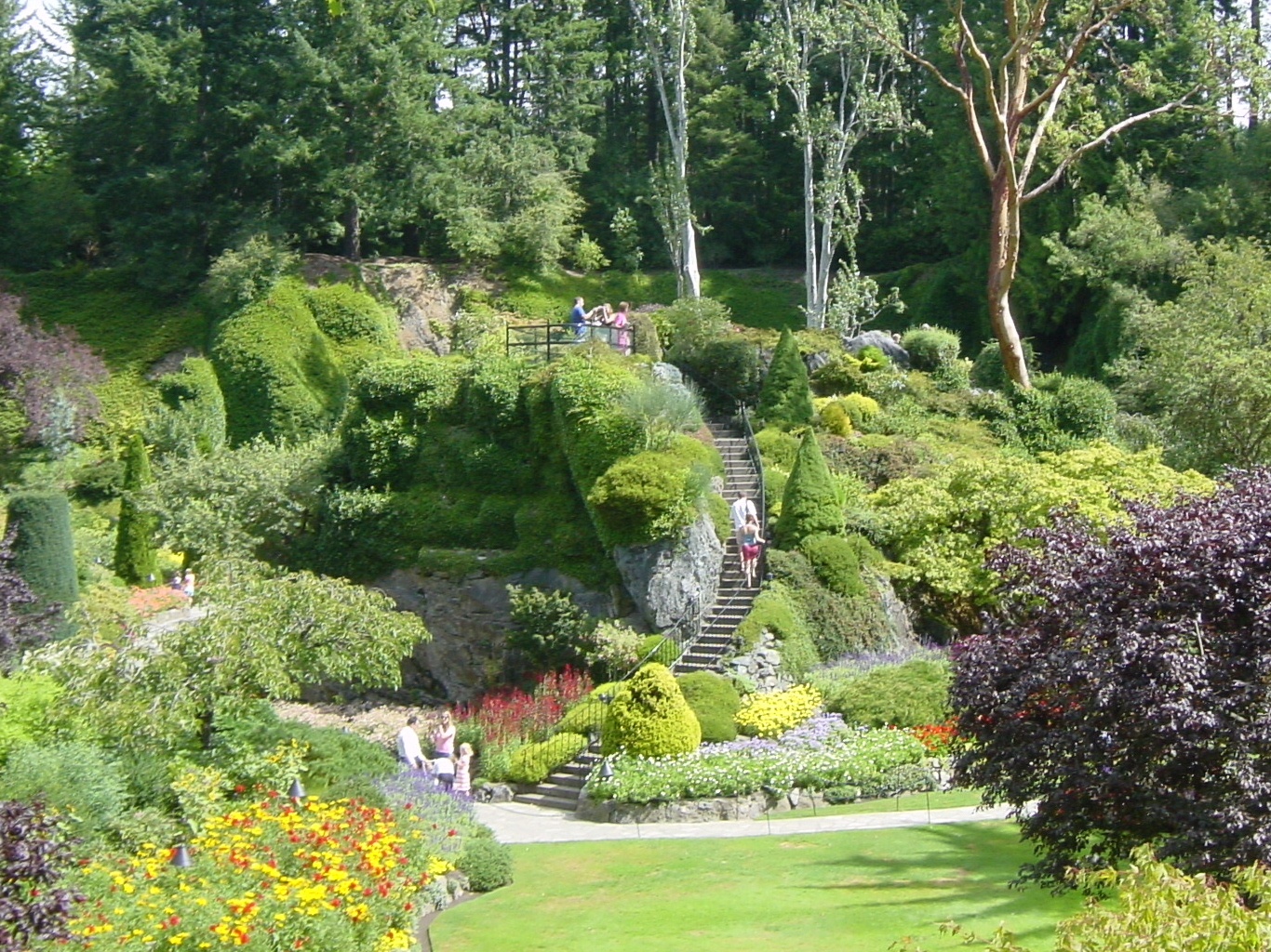 Flowers and trees at Butchart Garden