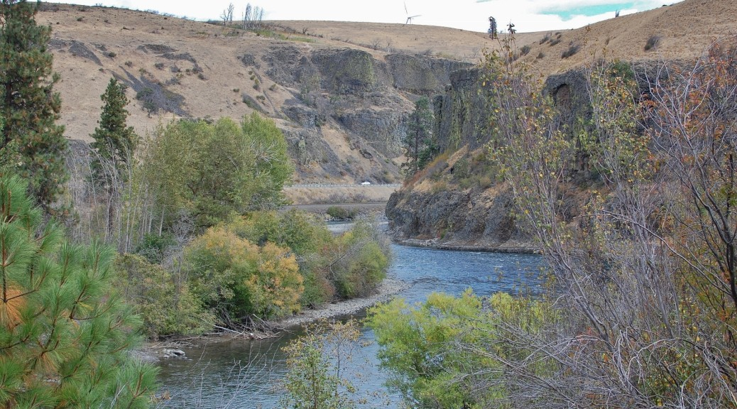 Yakima River along the Iron Horse trail